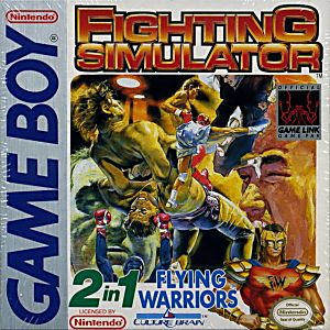 Fighting Simulator 2-in-1