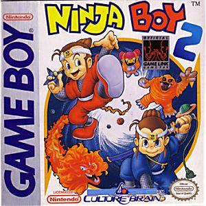 Ninja Boy II